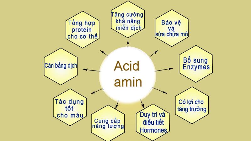 Puritans pride liquid aminos